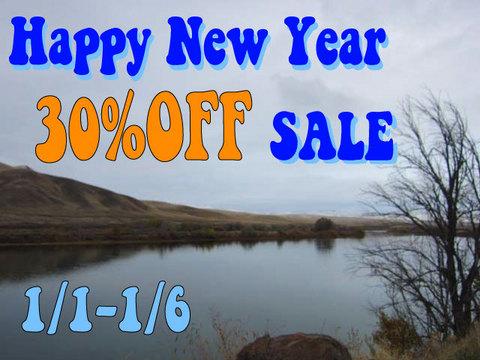 new-year-sale-2016.jpg